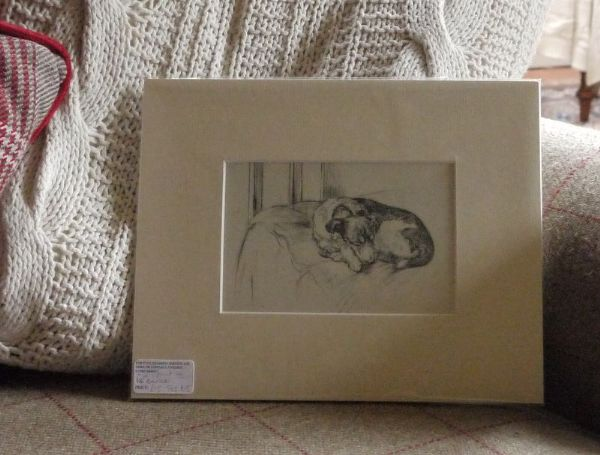Terrier sleeping, 1940's print by K F Barker - Ter B5
